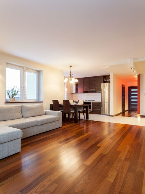 interior-living-area-floors